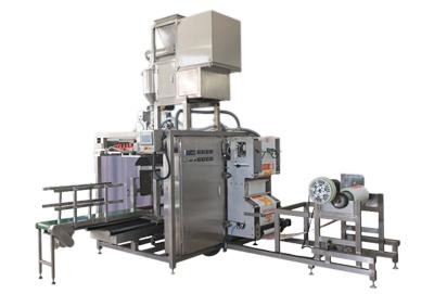 全自动重膜包装机 FFS重膜包装机 胜龙机械SL-450