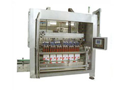 SL-NW 链轮式装箱机